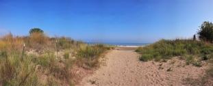 Illinoiis State Beach